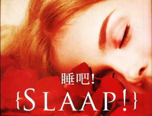 ¡Duerme!